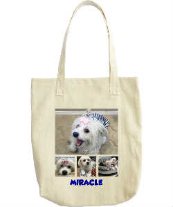 SPFs Miracle Tote Bag