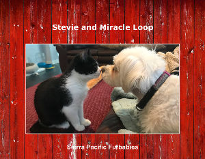 SPFs Stevie and Miracle Wall Calendar