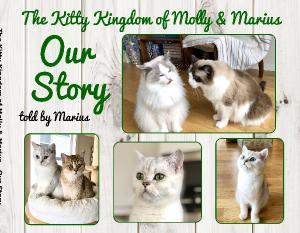 Our story, a Photo book from The Kitty Kingdom