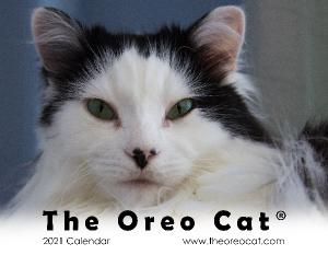 The Oreo Cat® 2021 Wall Calendar