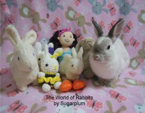 Rabbits by Sugar Plum