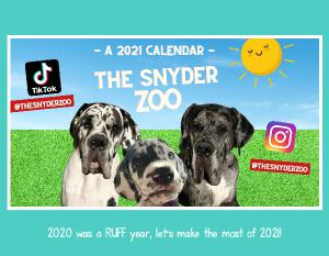 13 Month Calendar - The Snyder Zoo