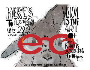 Eisenbrei Optical 2019 Calendar