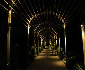 Walkway At Night