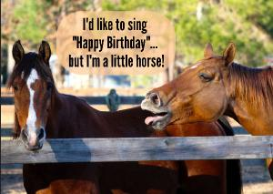 I'd like to sing Happy Birthday... but I'm horse!