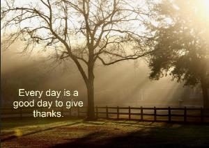Every Day is a Good Day to Give Thanks