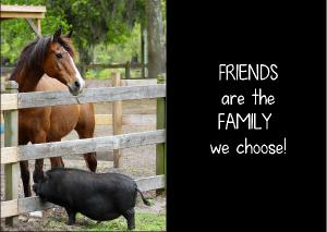 FRIENDS are the FAMILY we choose!