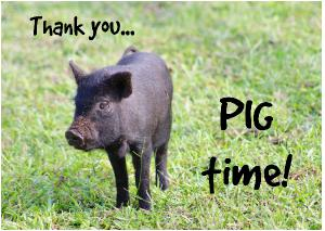 Thank you... PIG Time!