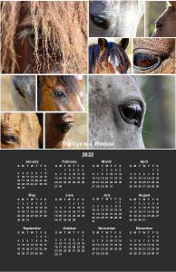 The Eye is a Window 2019 Poster Calendar