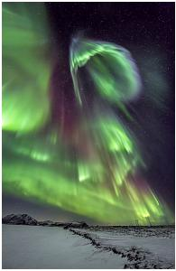 Northern Lights Book1