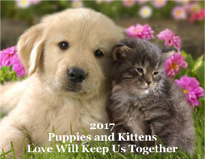 2017 Puppies and Kittens Calendar