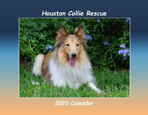 2020 Collie Rescue Houston