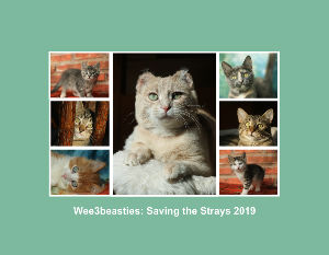 Wee3beasties: Saving the Strays 2019