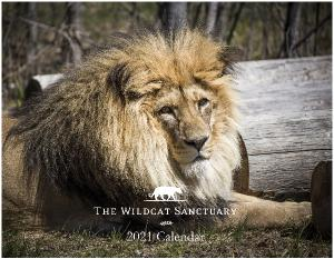2021 The Wildcat Sanctuary Calendar