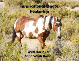 Inspirational quotes featuring wild horses