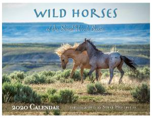 Wild Horses of the Sand Wash Basin 2020