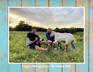 Ziggy's Refuge Farm Sanctuary 2021 Calendar