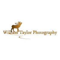 williamtaylorphotography
