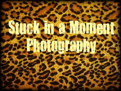 stuckinamomentphotography