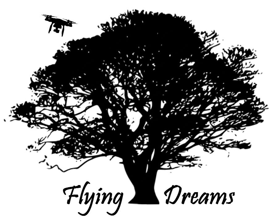 flyingdreams