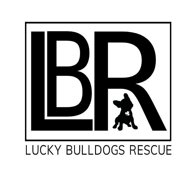 luckybulldogsrescue