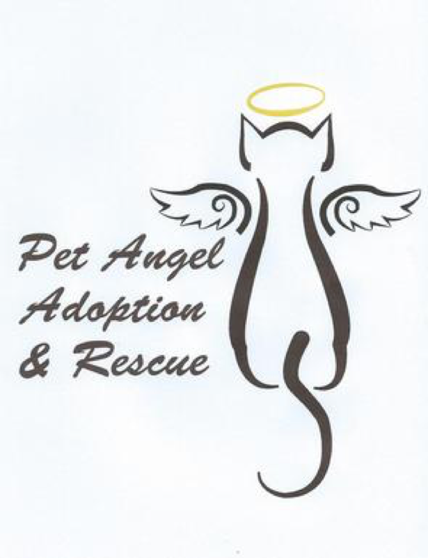 petangeladoptionrescue