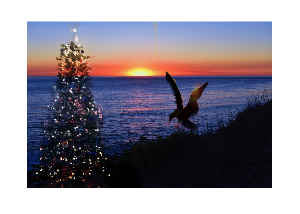 Christmas On Sunset 2019 Christmas Card Sunset 2019 By Concetta Ellis   Create Photo Calendars